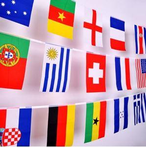 Снимка от Знамена 21 бр., наниз